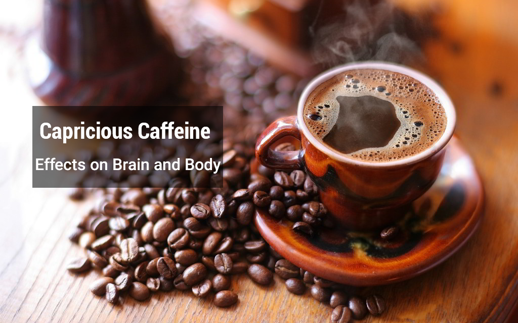 the effect of caffeine in human body essay Free essays regarding effect caffeine on heart rate for download 1  blood is sent pulsing through the body's veins,  cause effect essay.